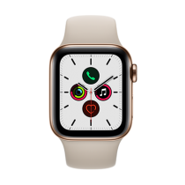 Apple Watch Series 5 (GPS + Cellular) Stainless Steel 40mm. Gold Stainless Steel Case  with Stone Sport Band